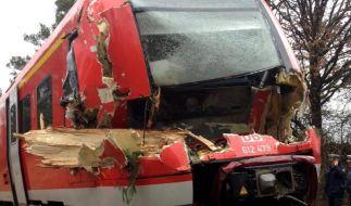Zerstörter Triebwagen des Regionalexpresses Bayreuth-Nürnberg: Der Zug war in einen umgeworfenen Baum gefahren. (Foto)