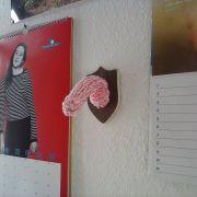 Schweizer strickt Penisse zum Aufhängen (Foto)
