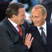 Putin verrät: So schwitzt er mit Schröder in der Sauna (Foto)