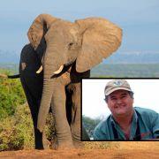 Elefant zerquetscht Großwildjäger (Foto)