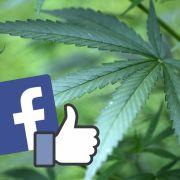Facebook für Kiffer (Foto)