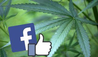 Der Handel mit Marihuana boomt in den Staaten, in denen es legalisiert wurde. Da war es nur eine Frage der Zeit, dass das passende Social Network für Kiffer an den Start ging. (Foto)