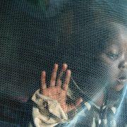 Wirksamer Malaria-Impfstoff getestet (Foto)