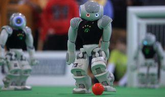 Roboter kicken in Magdeburg - fast schon wie Profis (Foto)