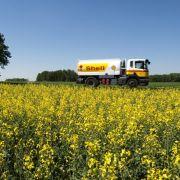 EU begrenzt Biosprit aus Nahrungspflanzen (Foto)