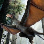 Experiment der Evolution: Dino mit Hautflügeln (Foto)