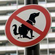 DNA-Analyse soll faule Hundehalter enttarnen (Foto)