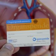 Mediziner vorsichtig optimistisch: Wieder mehr Organspenden (Foto)