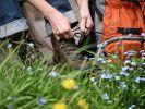 Zalando startet stark ins Jahr und erhöht Prognose (Foto)