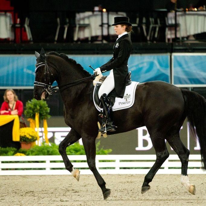 Ihr Laufsteg ist die Pferdekoppel (Foto)