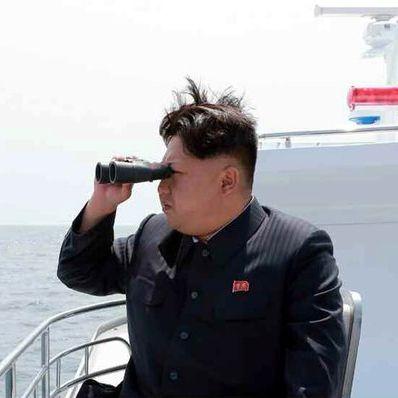 Eklat auf Schildkrötenfarm! Kim Jong Un will Hummer (Foto)