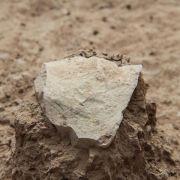 Archäologen: Älteste Steinwerkzeuge entdeckt (Foto)