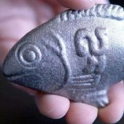 Kleiner Fisch soll Millionen Menschenleben retten (Foto)