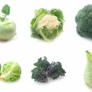 Die zehn wichtigsten Foodtrends 2015 (Foto)