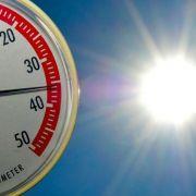 Hendricks: Klimawandel in Deutschland deutlich spürbar (Foto)