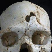 «Uraltes Verhalten»: Ältestes Mordopfer entdeckt (Foto)
