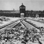 So sehr litten die Holocaust-Opfer in Auschwitz (Foto)