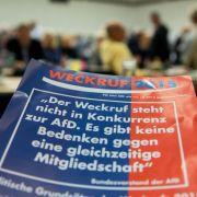 Bundesparteitag der AfD steht auf der Kippe (Foto)