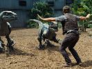 Owen Grady (Chris Pratt), der Dinoflüsterer, in Aktion. (Foto)