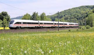 Die Deutsche Bahn bietet im Sommer einen neuen Sparpreis an. (Foto)