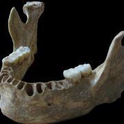 Sex mit dem Neandertaler - Vermischung auch in Europa (Foto)