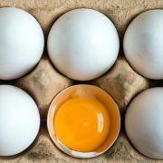 Vogelgrippe in den USA lässt Eier-Preise in der EU steigen (Foto)