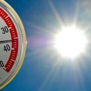 Hitzewelle überrollt Deutschland im Juli (Foto)