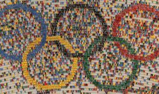 Die Olympischen Spiele werden bis 2024 nicht im öffentlich-rechtlichen TV-Programm zu sehen sein - offenbar hat sich Eurosport die Übertragungsrechte des Großereignisses gesichert. (Foto)
