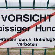 Mehr Hunde-Angriffe in einigen Bundesländern (Foto)