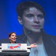 Nach Wahl von Frauke Petry: Rückt die AfD stärker nach rechts? (Foto)