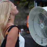 Jegliche Art der Abkühlung wird gerne angenommen, ob vor einem Ventilator...
