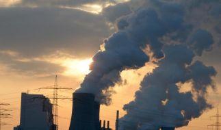 RWE-Kraftwerke ziehen Bilanz - Zukunft der Braunkohle Thema (Foto)