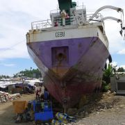 Weniger Schäden durch Naturkatastrophen (Foto)