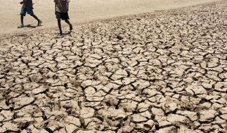 Studie: Mehr Hitzetote aufgrund des Klimawandels (Foto)