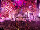 Im Live-Stream: Tomorrowland 2015
