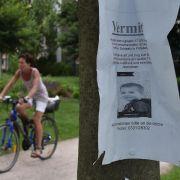 Trotz 900 Hinweisen: 6-Jähriger bleibt verschwunden (Foto)
