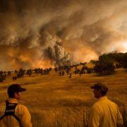Brände wüten im Norden Kaliforniens (Foto)