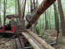 Mann stirbt bei Unfall mit Forstmaschine (Symbolbild). (Foto)