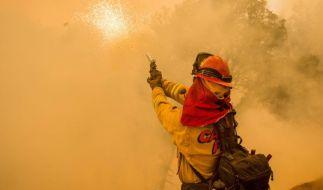 Mit Feuer gegen das Feuer: Mit einem Flammenwerfer wird eine Brandschneise geschaffen, um dem Waldbrand keine neue Nahrung zu liefern. (Foto)