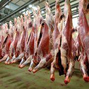 Schlachthöfe erzeugen so viel Fleisch wie nie (Foto)