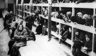 Häftlinge im KZ Auschwitz-Birkenau. (Foto)