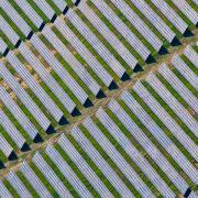 Solaranlagen produzieren erstmals so viel Strom wie Atomkraftwerke (Foto)
