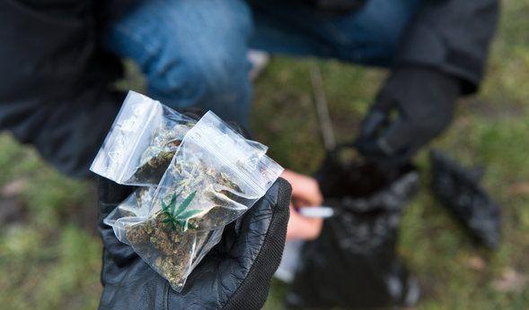 Marihuana, Kokain, Haschisch und Co.