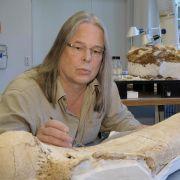 Mammut als «Symbol der Eiszeit» lebte auf drei Kontinenten (Foto)