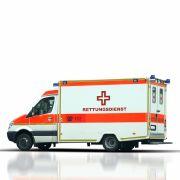 Im Rettungswagen! Sanitäter fallen über Frau her (Foto)