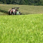Grüne fordern neue Hilfen für Ökolandbau (Foto)