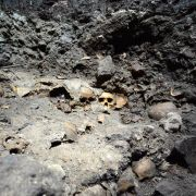 Azteken-Ruine mit Schädeln von Menschenopfern entdeckt (Foto)