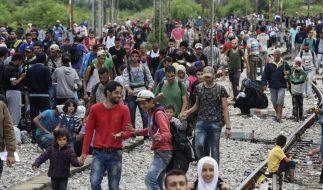 Mazedonien kapituliert vor Flüchtlingen (Foto)