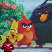 «Angry Birds»-Macher streicht 260 Jobs (Foto)