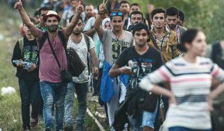 Ungarn verstärkt Südgrenze - Flüchtlingsstrom hält an (Foto)